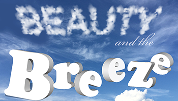 More Info for Families Create! Beauty and the Breeze