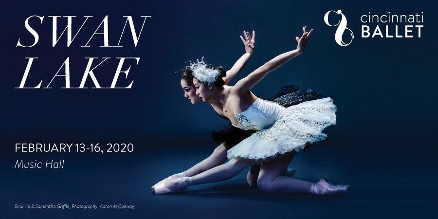 900-x-450-Swan-Lake.jpg