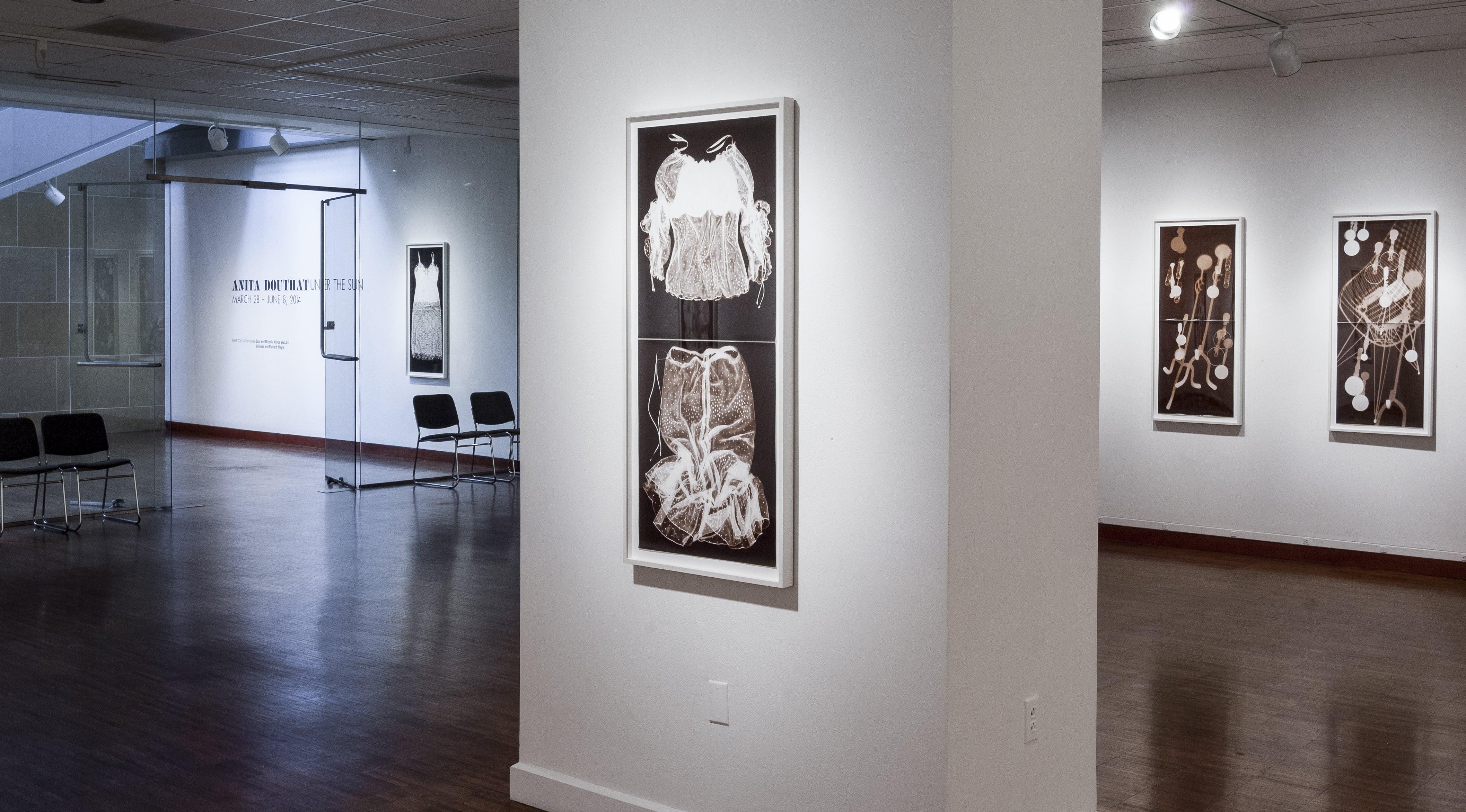 ... Anita   Transparent Uniforms X (Variation 2), 2007, Photograms, 48 X 20  Inches ...