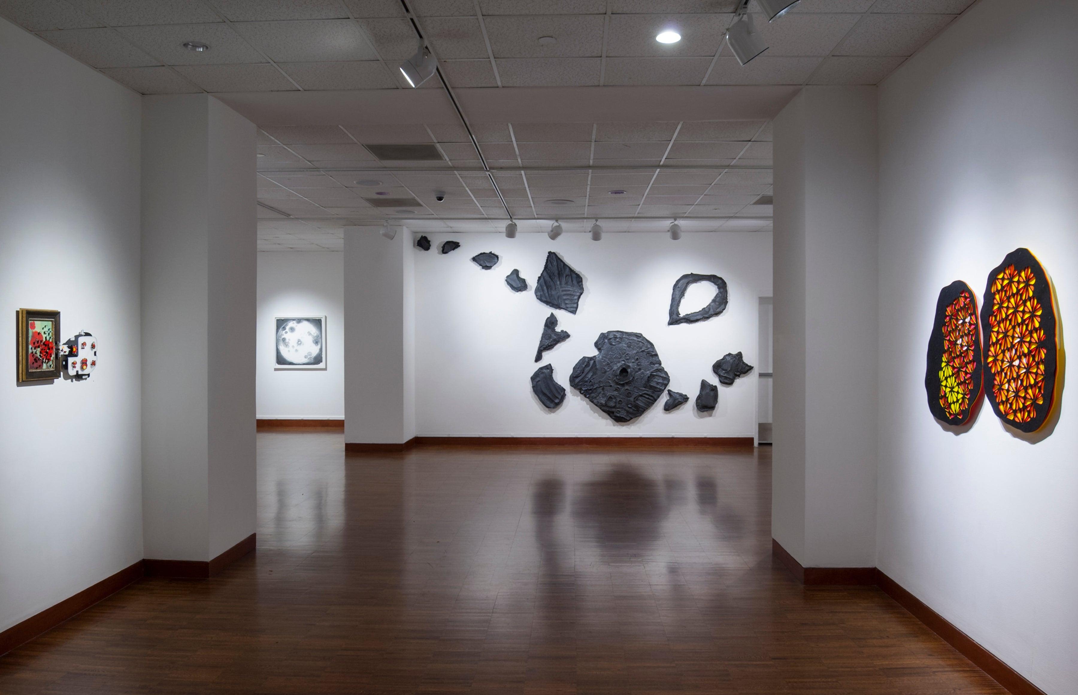 Synthetica - corridor installation view 1a.jpg