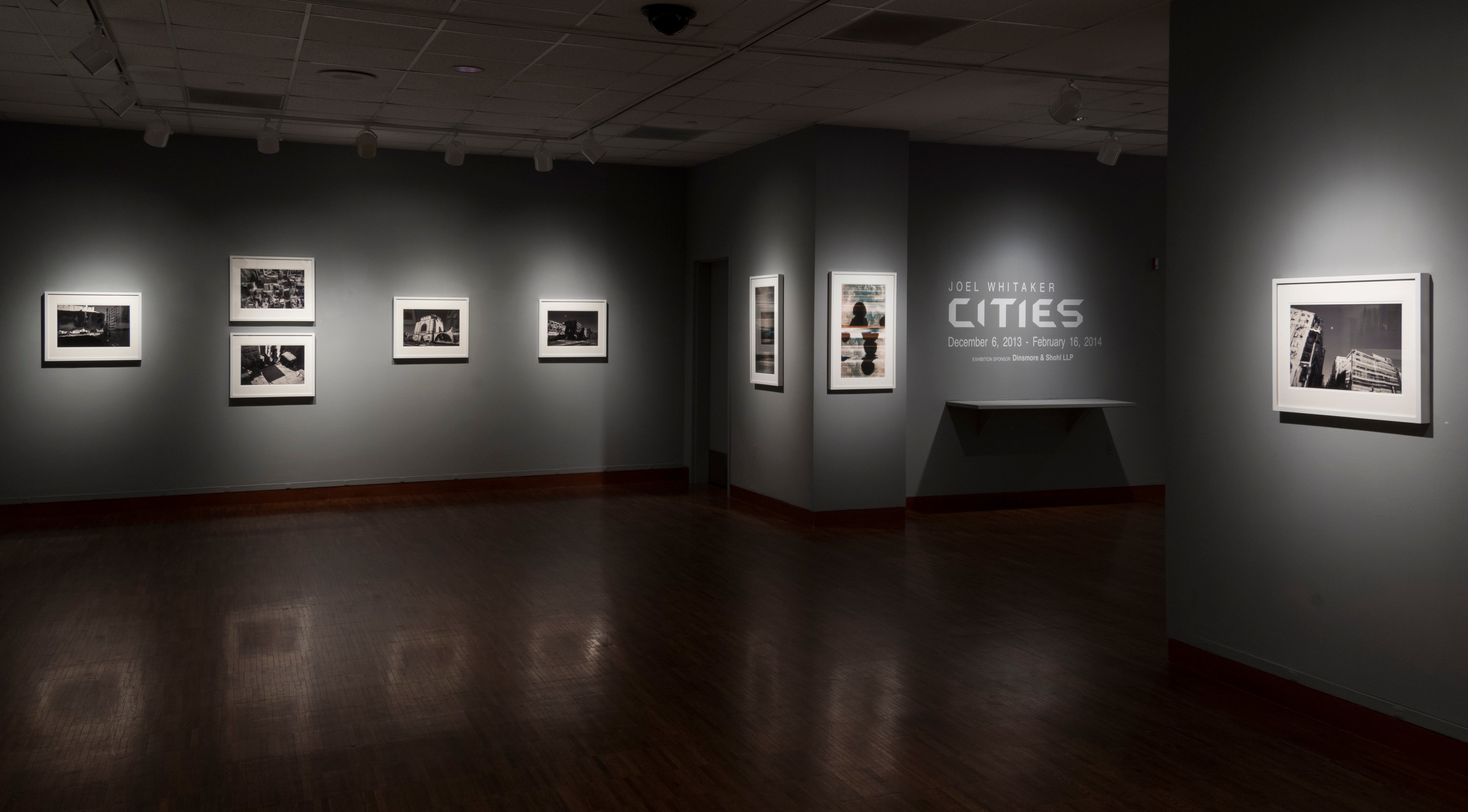 Whitaker, Joel - installation view (south and west walls).jpg